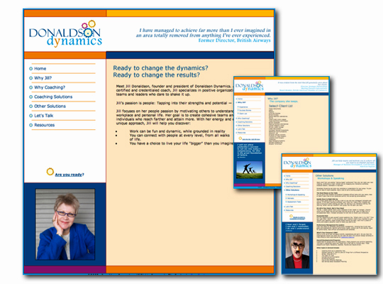 Home page and example content pages for Paula Minahan's interactive client Donaldson Dynamics